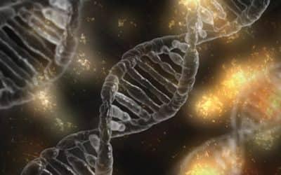 Nouvelle technologie : le véritable avenir de la santé