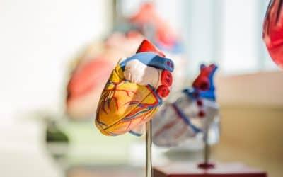 Emploi Cardiologue : quelle différence entre cardiologue invasif et cardiologue non invasif ?